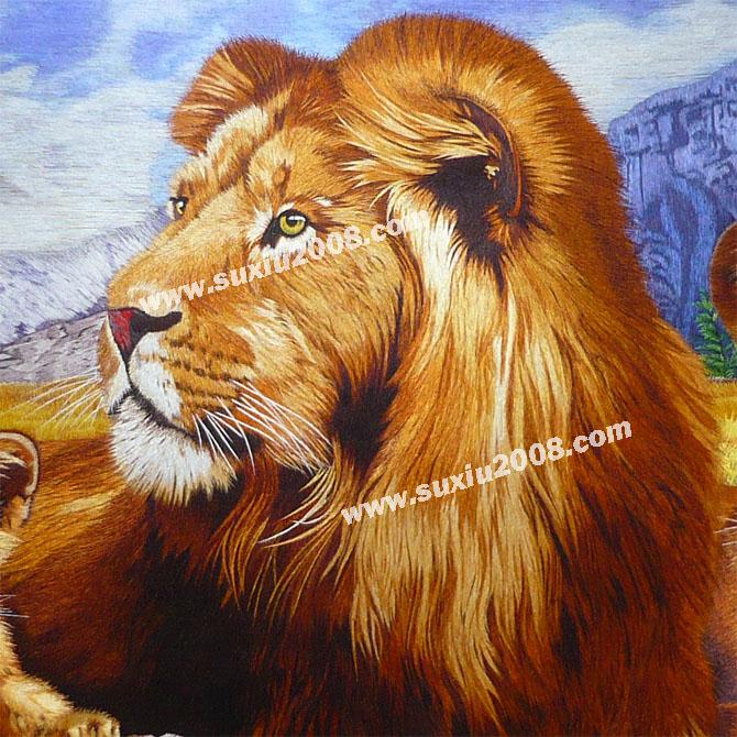 狮子属群居性动物,是地球上最强大的猫科动物之一,全世界其他猫科动