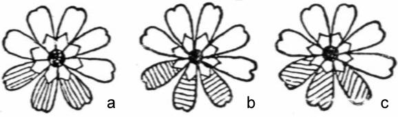 平绣是苏绣中主要的绣种,它是指用刺绣线条组成较大面积针法绣的绣品。包括齐针、抢针、套针、擞和针、施针。 (1)齐针。也叫缠针。是初学者首先要学习的针法,亦是所有平绣针法的基础,只要齐针能绣得平、匀、齐、密。其它的针法就容易掌握了。 齐针的绣法是用线条均匀,齐整地排列成平面。起落针都要在纹样的外缘,线条排列要疏密得当,不能重叠。不能露底。边缘力求齐整。齐针按丝理不同可分直、横、斜三种。即直缠、横缠、斜缠(图3-1-3)。齐针一般用于绣细长的花瓣、叶、梗以及图案纹样。刺绣时除注意边缘插针要齐、密外。还要拉线轻